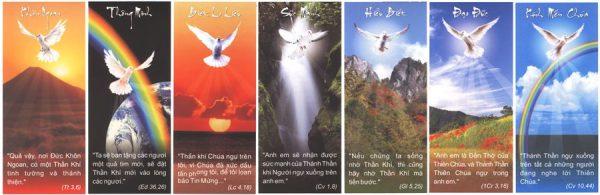 7onchuathanhthan 600x195 - Có bao nhiêu ơn Chúa Thánh Thần?