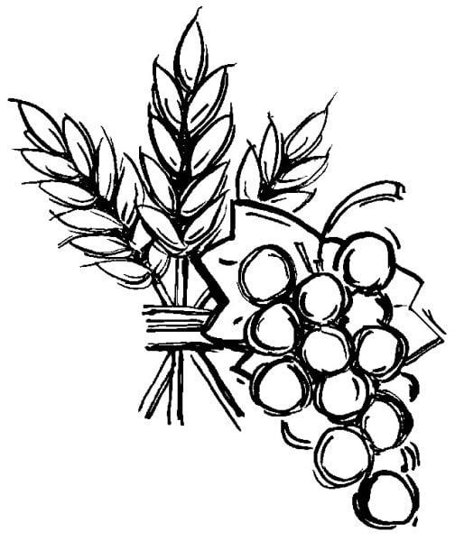 euchrst 504x600 - Luật giữ Lễ ngày Chúa Nhật cùng các ngày Lễ Buộc được quy định như thế nào?