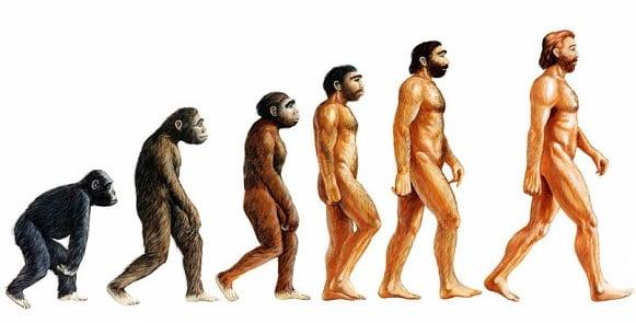 khi thanh nguoi khong do tien hoa - Khỉ thành người không do tiến hóa
