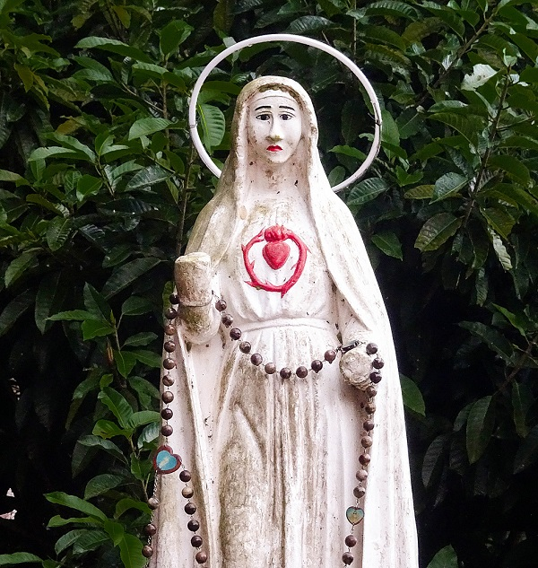 Bé Ksor H' Lari được Đức Mẹ Măng Đen chữa bệnh tim bẩm sinh 2