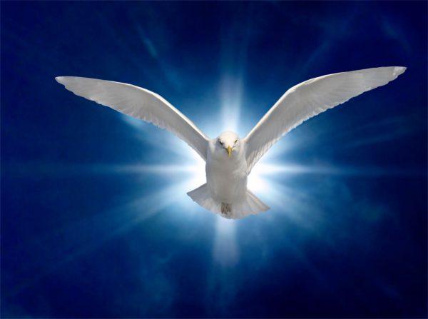 chua thanh than mot an hue 2 600x447 - Chúa Thánh Thần, một ân huệ