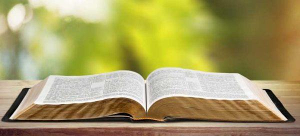 Lời chúa hàng ngày - Ngày 09 tháng 09:Thứ sáu tuần 23 Thường Niên