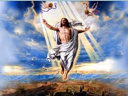 loi chua hang ngay chua hien dung - Lời chúa hàng ngày - Ngày 6 tháng 8: chúa hiển dung (Lễ kính)