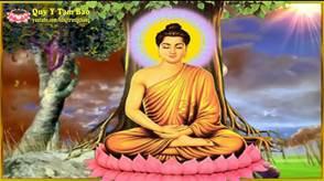 tieu su duc phat thich ca phat giao 1 - Tiểu sử Đức Phật Thích Ca (Phật giáo)