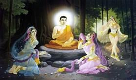 tieu su duc phat thich ca phat giao 7 - Tiểu sử Đức Phật Thích Ca (Phật giáo)