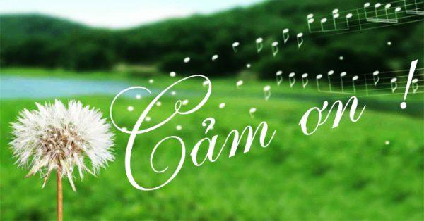 vai suy nghi ve viec phat bieu cam on trong thanh le e1557540354837 - Vài suy nghĩ về việc phát biểu cảm ơn trong thánh lễ