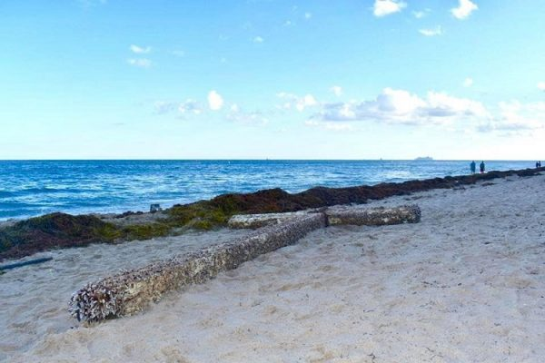 thanh gia 2 600x400 - Chuyện lạ: Cây thánh giá khổng lồ xuất hiện trên bờ biển