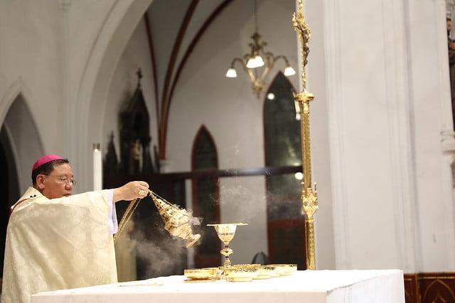 16140 btkt 15 - 28 Tân tòng ra mắt tại Nhà thờ Chính tòa Hà nội