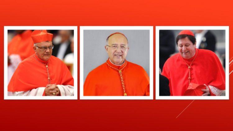 3 vi chu tich thua uy thuong hoi dong giam muc amazzonia 750x422 - Đức Thánh Cha bổ nhiệm ba vị Chủ tịch thừa ủy cho Thượng Hội đồng Giám mục Amazzonia